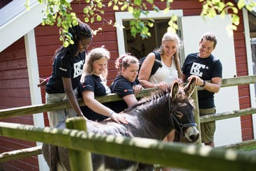 Fem glade Burn Camp deltakere som klapper et Esel. På gårsbesøk i Larvik.